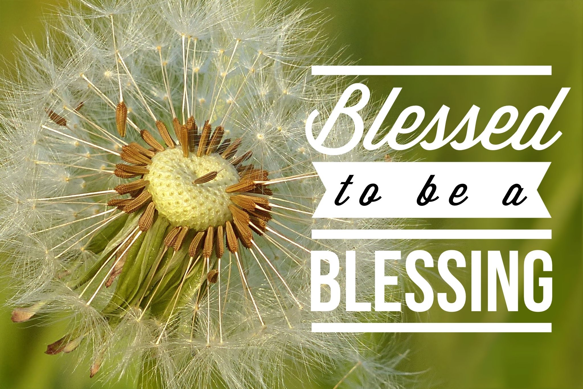 Image result for be a blessing